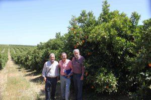 """Miembros del jurado del """"Concurso de la mejor plantación de Barberina"""""""